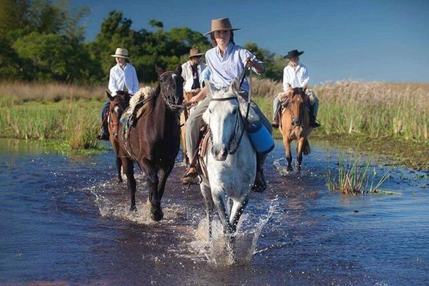 Show item 2 of 9. Horseback Riding & Swimming in Esteros del Iberá, Argentina