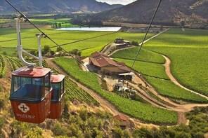 Colchagua Valley Vineyard Private Tour All Inclusive