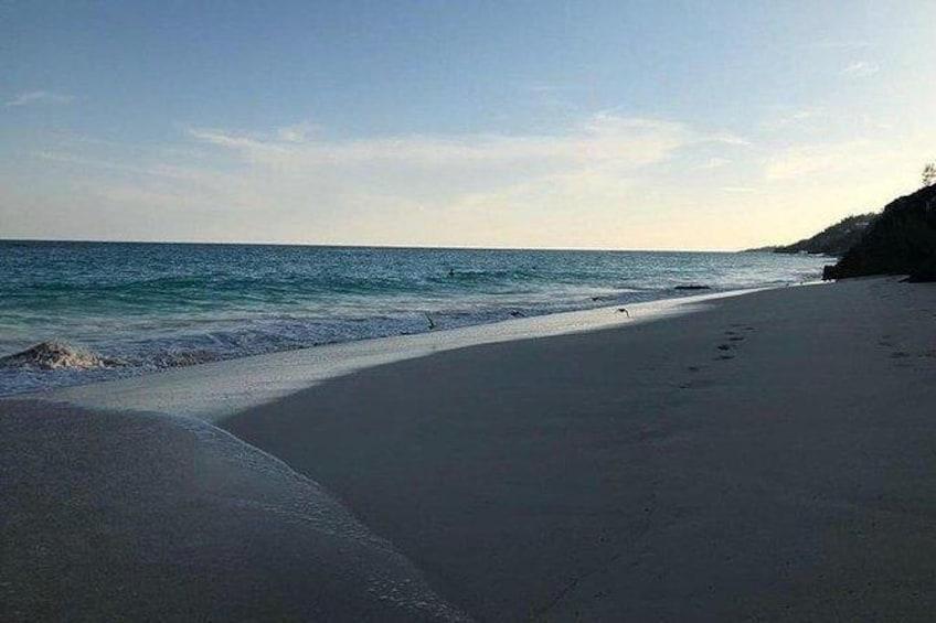 Show item 2 of 5. Bermuda Coastal and Woodland Adventure Hike