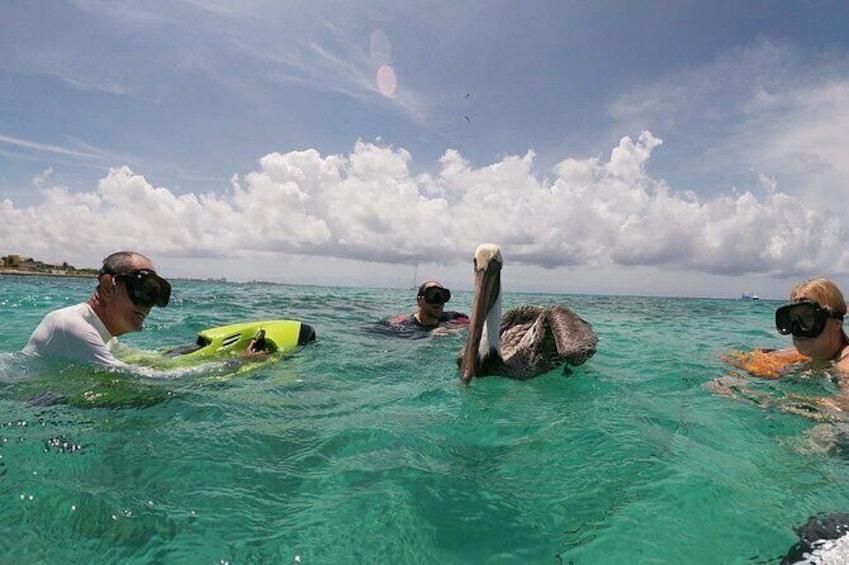 Show item 5 of 11. Antilla Shipwreck Seabob Tour