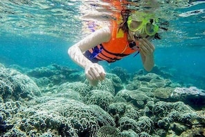 From Mui Ne To Vinh Hy Bay Snorkelling And Fishing Day Tours