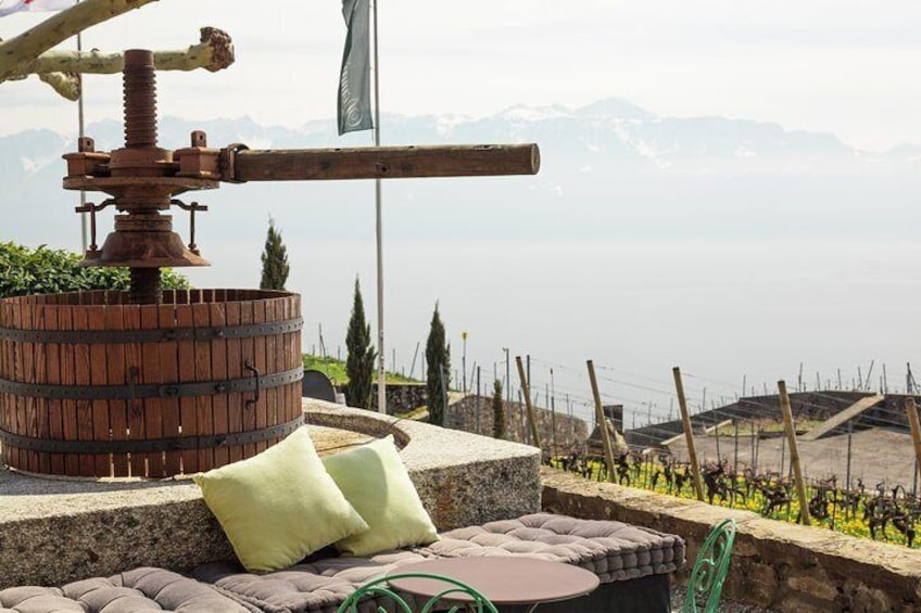 Wine Tasting with a view