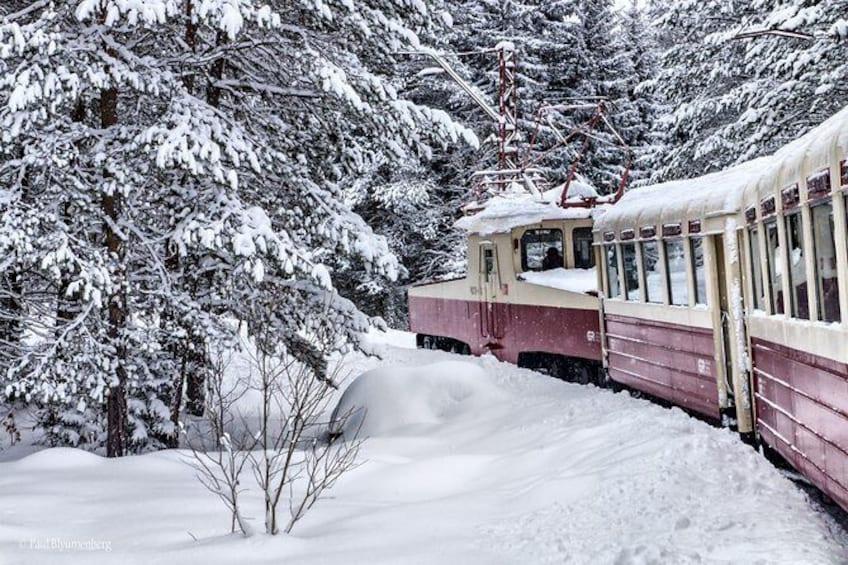 Show item 1 of 5. Borjomi-Bakuriani-Kukushka train Tour