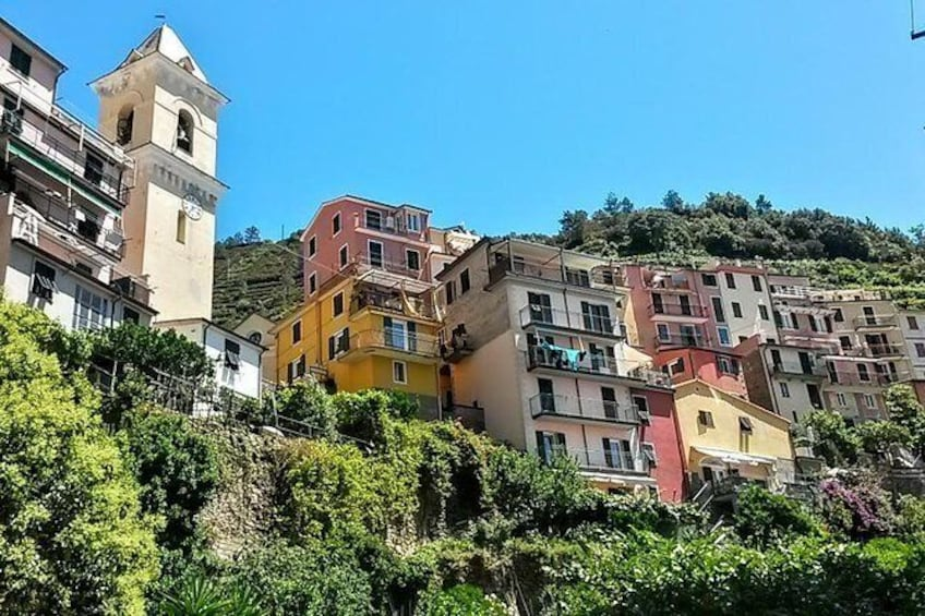 Show item 2 of 13. Get to know Manarola on a trip to the Cinque Terre