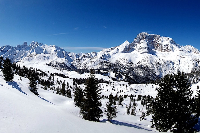 Show item 4 of 6. Snowshoe Tour in the Dolomites near Cortina (1 day)