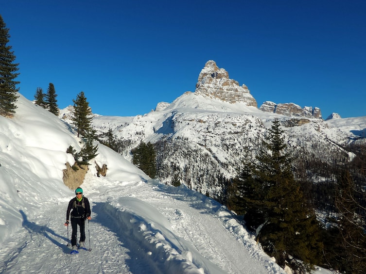 Show item 3 of 6. Snowshoe Tour in the Dolomites near Cortina (1 day)