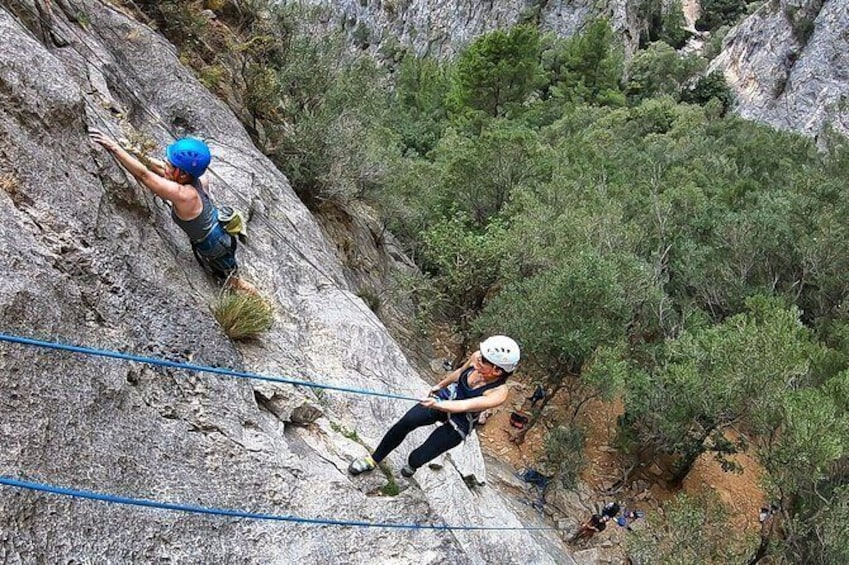 Show item 10 of 10. Fun Climbing: Half-day Rock Climbing Trip