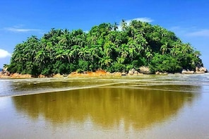 Santos: Full Day Beaches Experience