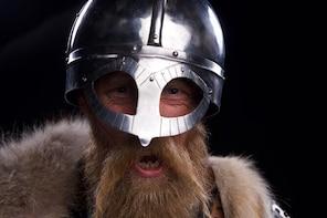 The Viking Planet