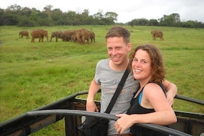 Guided Elephant Safari: See the Largest Gathering of Elephants in Asia!