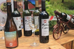 Wines with history