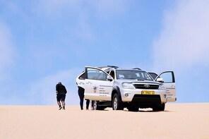 Desert and Dunes 4x4 Tour Swakopmund