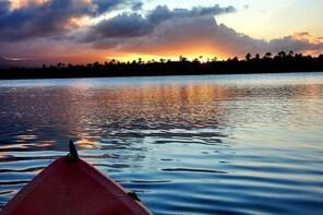 Evening Kayak Adventure at the Bio Bay