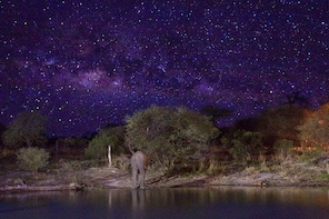 Stargazing on The Wilderness (Harare Night's Tour)