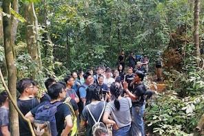 Day or Night Jungle Trekking with Sabarata, Bukit Lawang