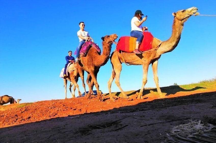 Show item 1 of 8. Day Trip: Waterfalls & Desert Agafay & Atlas Mountains & Camel ride