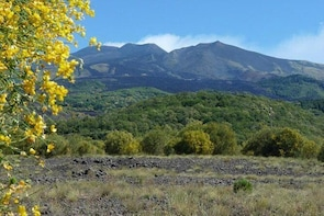 Etna Nature and Flavours Half-Day Tour from Catania
