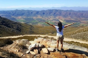 Half-Day Swartberg Pass Tour (with lunch & transfer from Oudtshoorn guestho...