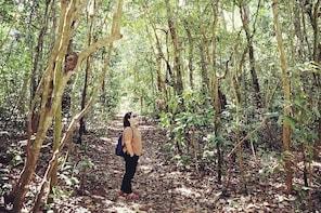 Suranadi Forest Trekking and Holy Swimming