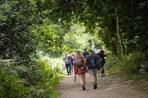 Sherwood Forest Explorer - Private Group Walking Tour of Sherwood Nature Re...