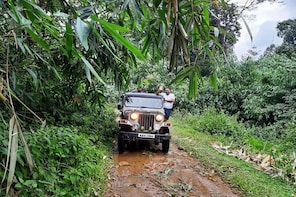 Munnar Mountain Jeep Safari