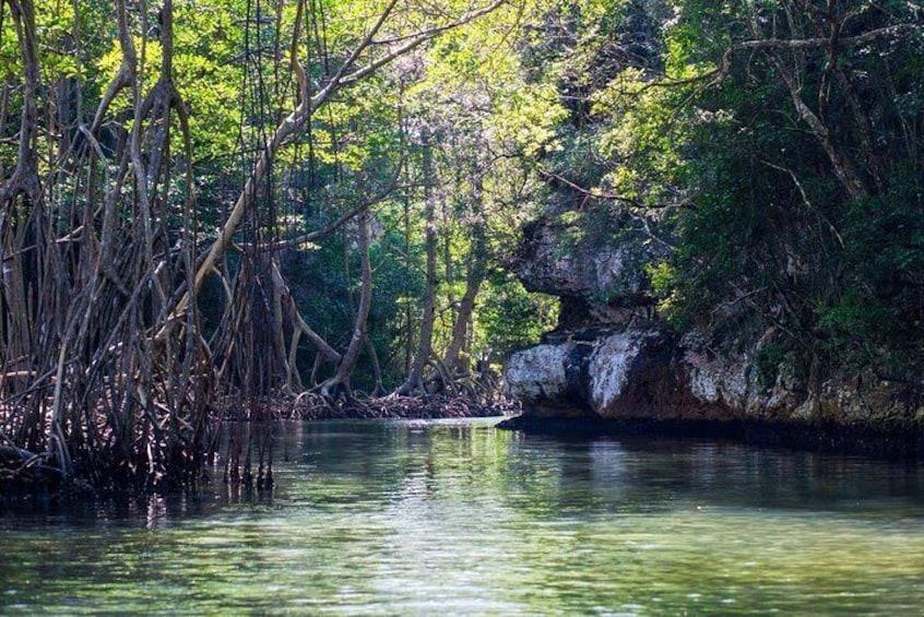 Full-Day at Los Haitises National Park 3