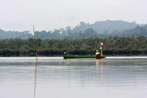 Loagan Bunut National Park Excursion