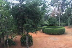 Spice plantation visit