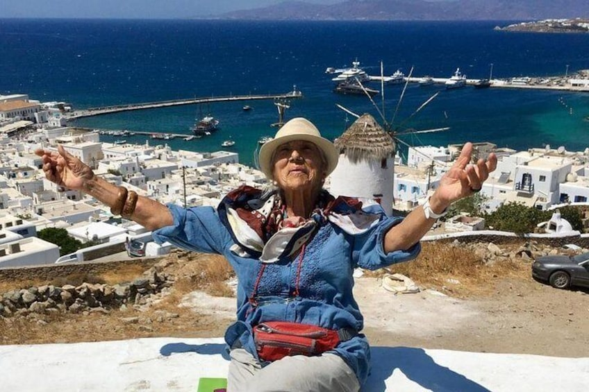 Half-Day Small-Group Guided Tour of Mykonos