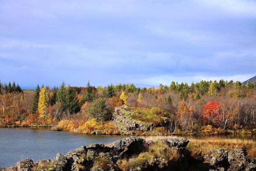 Lake Mývatn in autumn
