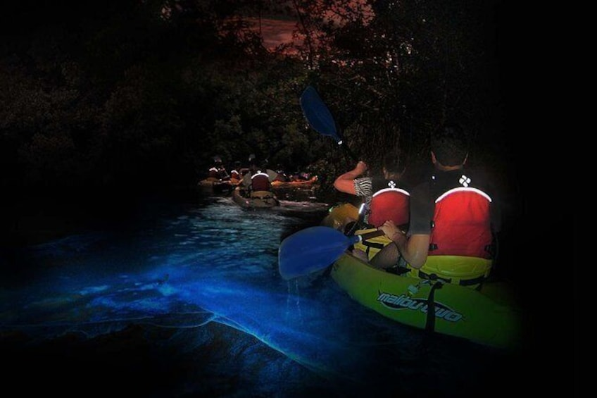 Show item 2 of 6. Night BioBay Kayak Tour from Vieques