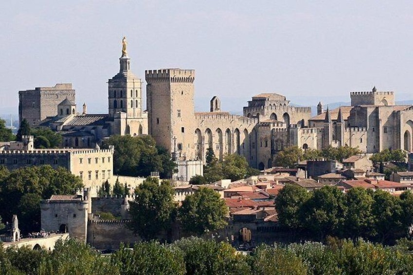 Show item 1 of 2. Full private day Avignon Chateuneuf du pape wine tasting