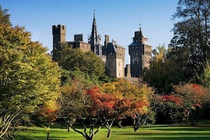 Cardiff Castle Admission Ticket