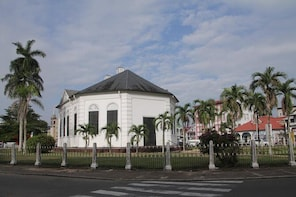 Small-Group Suriname City Walking Tour with Guide