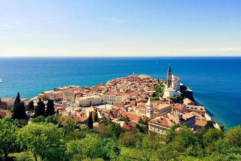 Piran Walking Tour with Local Wine and Food Tasting