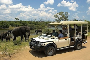 Chobe National Park Game Drive, Botswana