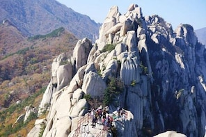 Hiking tour in Seoraksan National Park with Korean authentic chicken soup