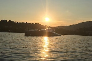 Evening Private Tour on a Solar Powered Boat - From Nice & Monaco