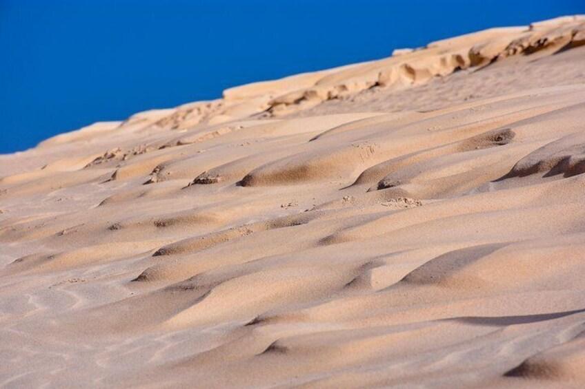 Show item 4 of 21. Dune Buggy Fuerteventura Off-Road Excursions