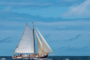 Anguilla Half-Day Sail and Snorkel Adventure to Little Bay