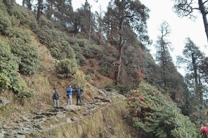 Nature Trek From Dharamshala