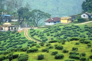 Explore The Rustic Life Of Thekkady With Lunch