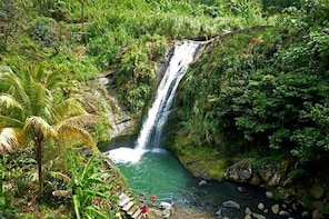 Full-Day Tour: Concord Waterfall, Chocolate Factory, Rum Distillery, Grand ...