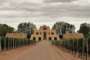 Catena Zapata Wine Tour from Mendoza
