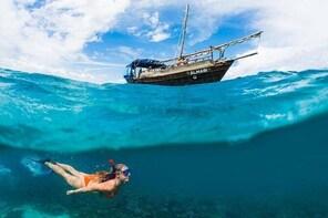 PILLI PIPA DHOW, the genuine product, snorkelling tour to Kisite Marine Par...