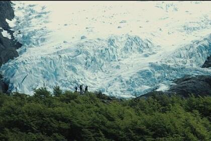 Trekking Vespignani Glacier from Punta Sur