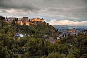 Official Guided Visit Alhambra, Nasrid Palaces and Generalife