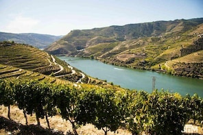 Porto and Douro Valley