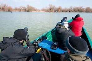 Danube Delta Guided Day Trip in WINTER - private programme