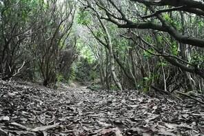 Pure Air Walking Trails